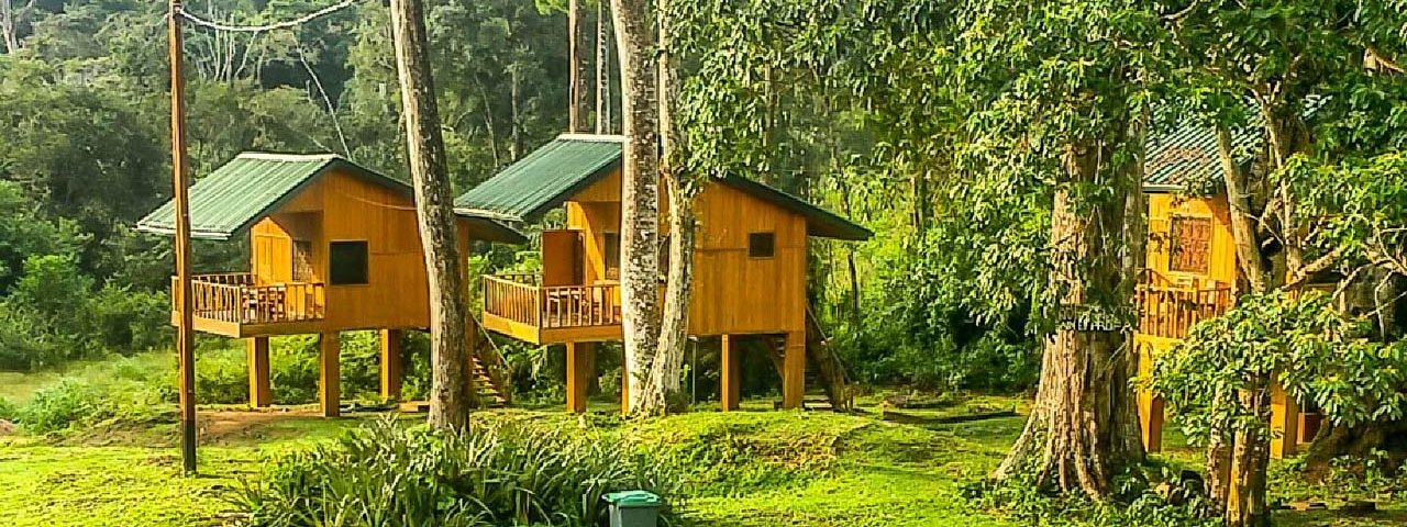 Site ecotouristique de Ebogo